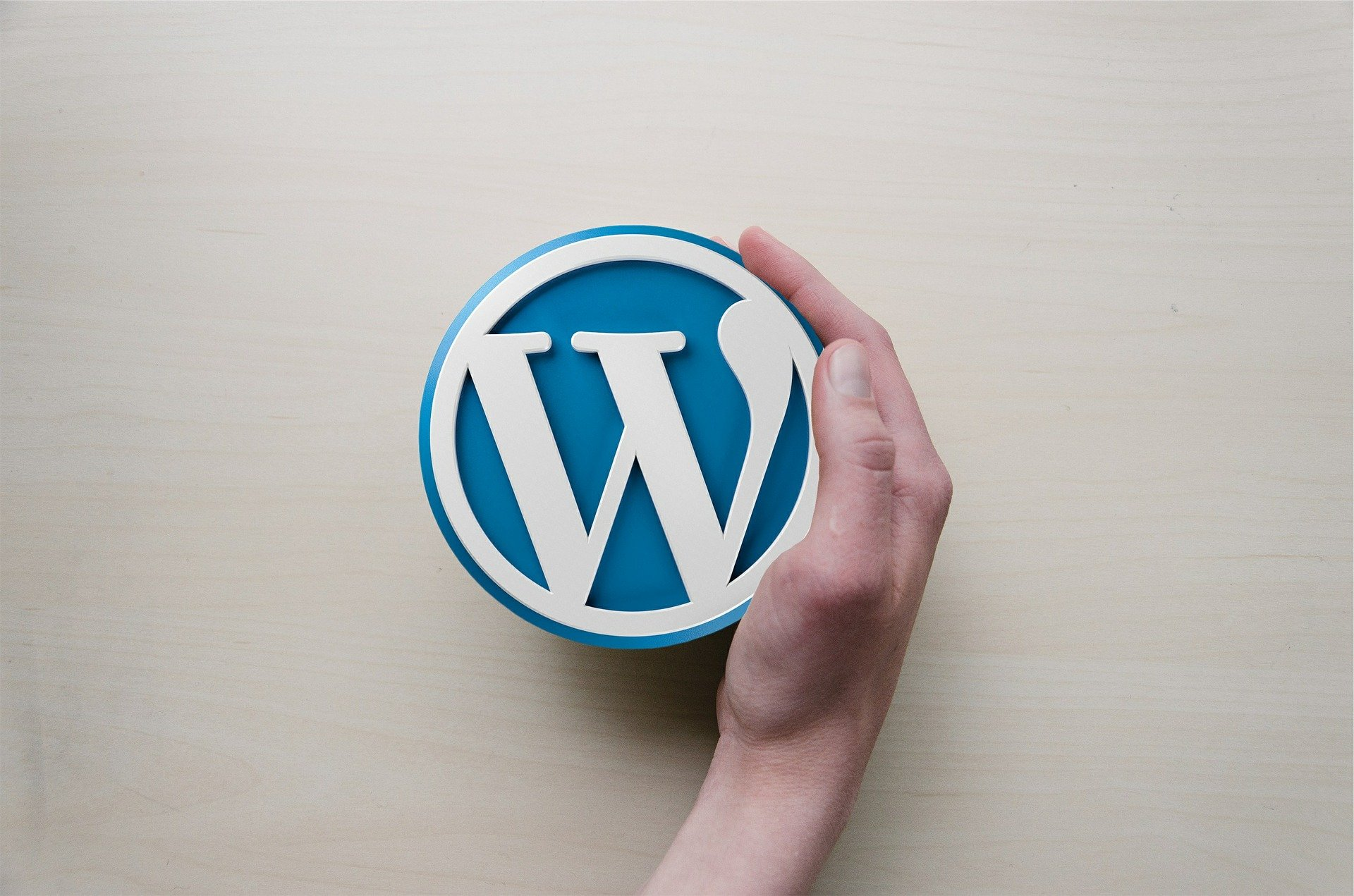 FunnelCockpit und Wordpress